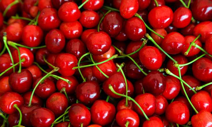 Health Benefits and Uses of Cherry Seed Oil